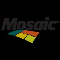 Mosaic S